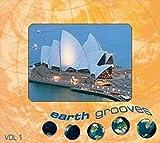 Earthgrooves 1