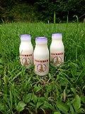 (ジャージ牛乳) (低温殺菌牛乳)白木牧場の特別牛乳 200ml×12本セット ※発送まで1週間程頂いております -