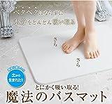 【日本製】モイスバスマット m...