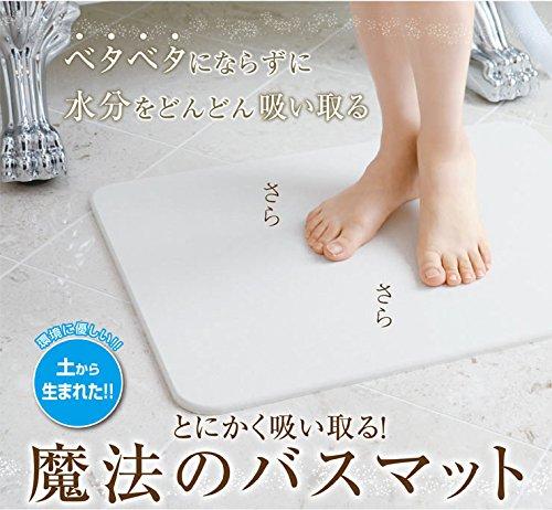 【日本製】モイスバスマット 440×290 moiss 珪藻土 速乾 防カビ 天然素材