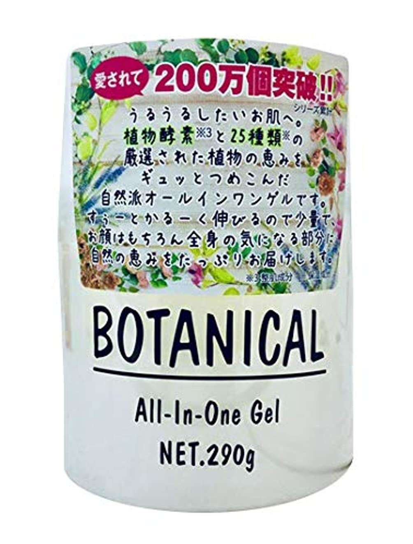 気質一般化する適切なボタニカル オールインワンゲル 290g