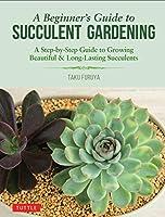 Beginner's Guide to Succulent Gardening