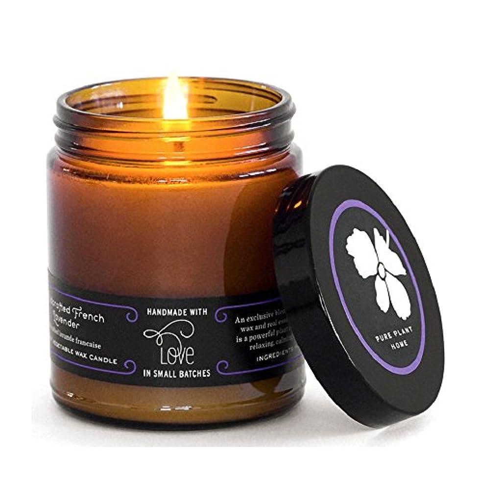 ダーリンおそらく暖かさピュア植物ホーム884 Large Amber Apothecary Jar Wildcrafted French Lavender CoconutワックスLarge Amber Apothecary Jar Wildフレンチラベンダー