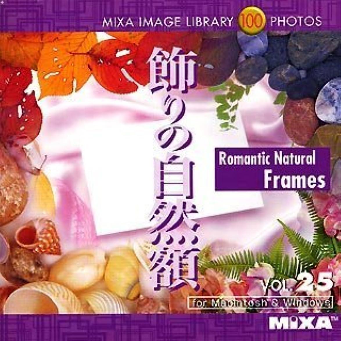 骨髄オーバーヘッドブローMIXA IMAGE LIBRARY Vol.25 飾りの自然額