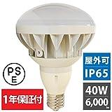 エジソン東京 バラストレス水銀灯 LED 40W 白色 6000K E39 口金 300W形 岩崎 東芝 各社器具対応