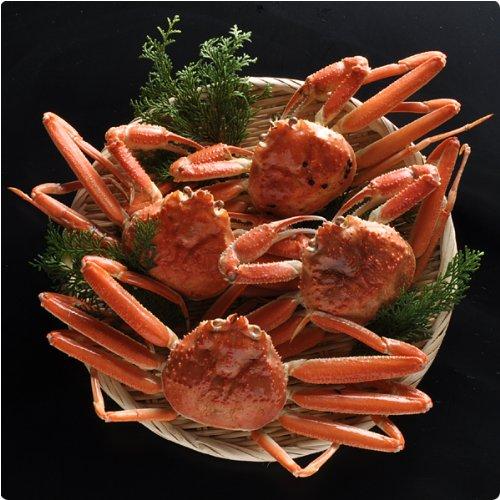 本物の目利きが選ぶ 鳥取網代の松葉ガニ 蟹尽くしセット 茹で 総重量1kg(3-4枚)