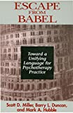 Escape from Babel: Toward a Unifying Language for Psychotherapy Practice (Norton Professional Books (Paperback))