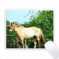 パーフェクトポーズは、彼女がポーズをとっているように見える馬の写真です。 PC Mouse Pad パソコン マウスパッド