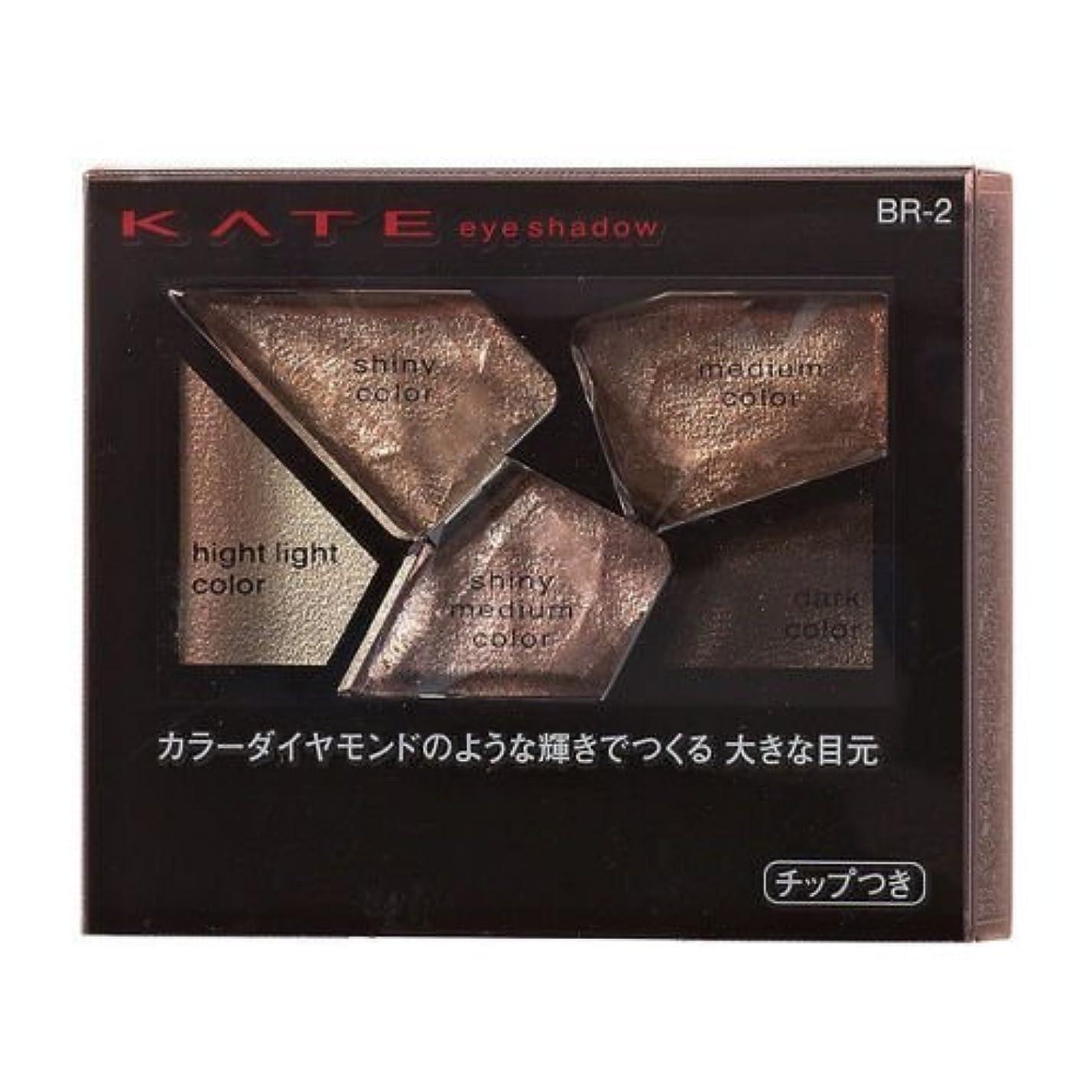 中断コンピューター熟読【カネボウ】ケイト カラーシャスダイヤモンド #BR-2 2.8g
