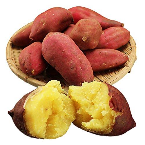 さつまいも 茨城県産 シルクスイート 約2.5kg サツマイモ(gn)