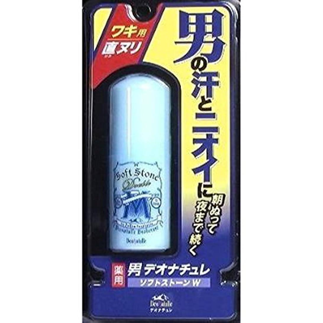 プラスチック悪性の松の木<お得な2個パック>デオナチュレ男ソフトストーンW 20g入り×2個