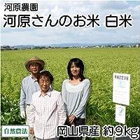 【30年度産】 河原さんのお米 白米 約9kg 自然農法無農薬米(岡山県 河原農園) 産地直送 ふるさと21