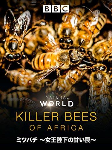 ミツバチ~女王陛下の甘い罠~ (吹替版)