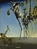 Salvador Dali: The Paintings, 1904 - 1989 画像