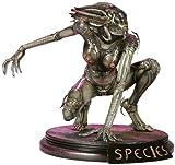 Species Maquette: Species