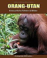 Orang-Utan: Erstaunliche Fakten & Bilder