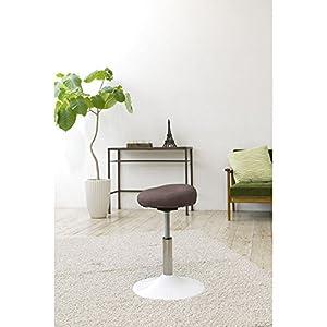 MIZUNO(ミズノ) 健康用具 トレーニング椅子 スクワットスリール C3JHI80255 ブラウン