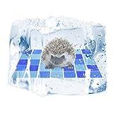 Petaccペットクーリングマット通気性ハムスタークーラーパッドハムスター、チンチラ、モルモット、ブルー、Lの快適な自己冷却ペットベッド