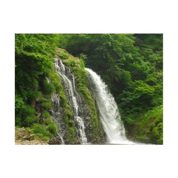末廣 吟醸セラー (720ml×6本) [福島県]の紹介画像3
