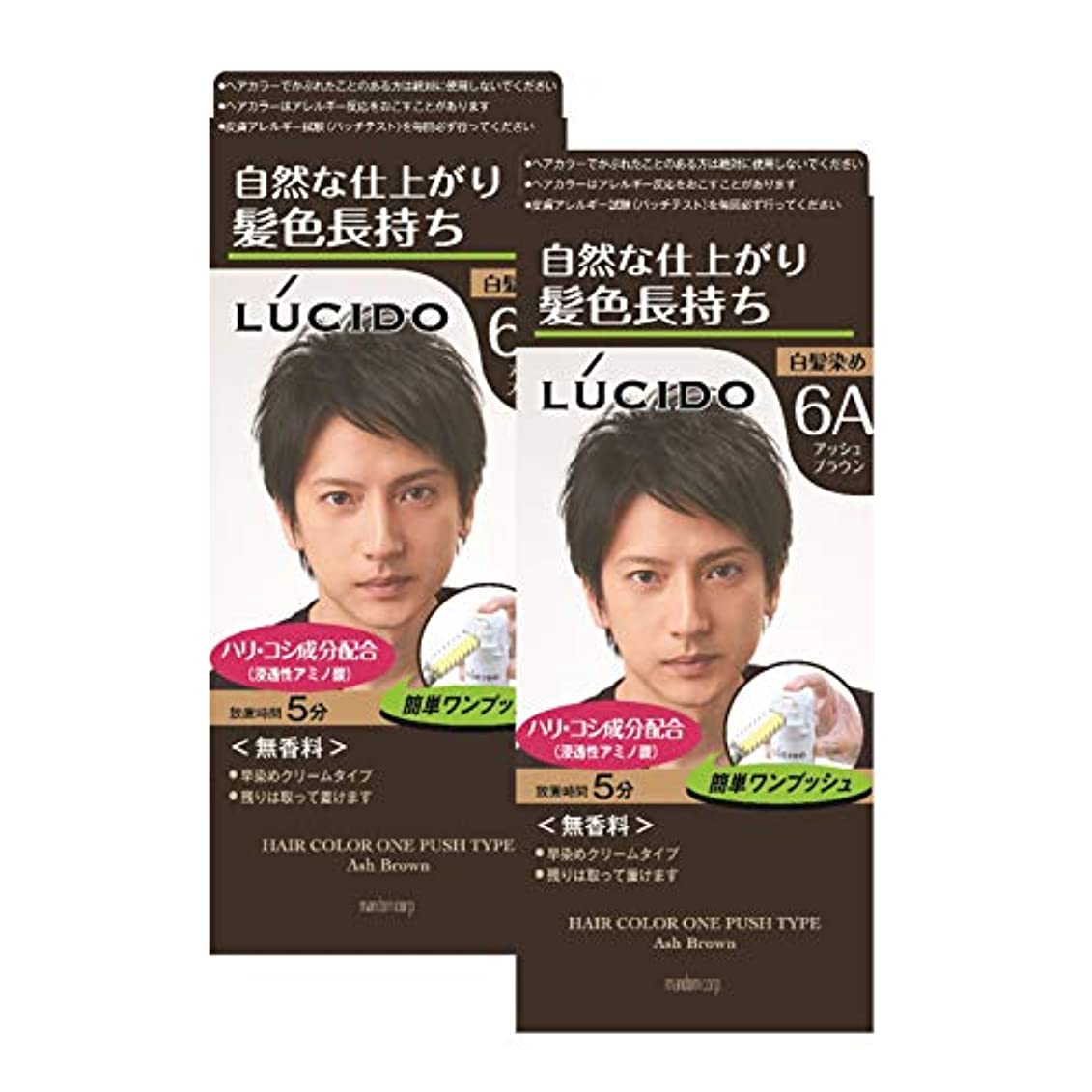 生産的段階効果的にLUCIDO(ルシード) ルシード ワンプッシュケアカラー アッシュブラウン (医薬部外品) 白髪染め 2個パック
