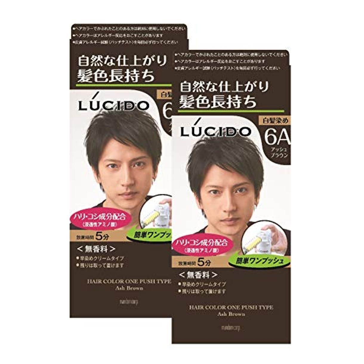【まとめ買い】ルシード(LUCIDO) ワンプッシュケアカラー アッシュブラウン 2個パック メンズ用 無香料 白髪染め ショートヘア約4回分 (医薬部外品)