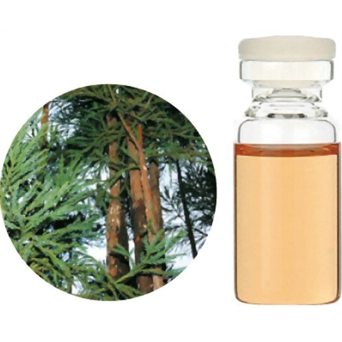 辛な明確なコロニー生活の木 Herbal Life 和精油 杉(木部) 3ml