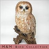 鳥のオブジェ バードコレクション M&M W393L フクロウ L ふくろうの置き物