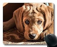 ゲーミングマウスパッド、かわいいかわいい犬のゴールデンレトリーバー、正確な縫い合わせ、耐久性のあるマウスパッド