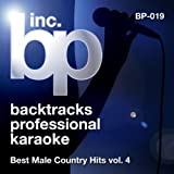 Amazon.co.jpWhiskey Lullaby (Karaoke Instrumental Track)[In the Style of Brad Paisley]