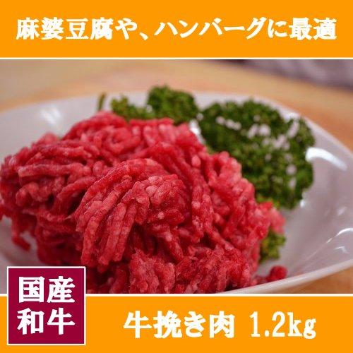 【 国産 和牛 】牛挽き肉 1200g(1、2キロ)【 牛肉 ハンバーグ 麻婆豆腐 料理 に 業務用 にも★】