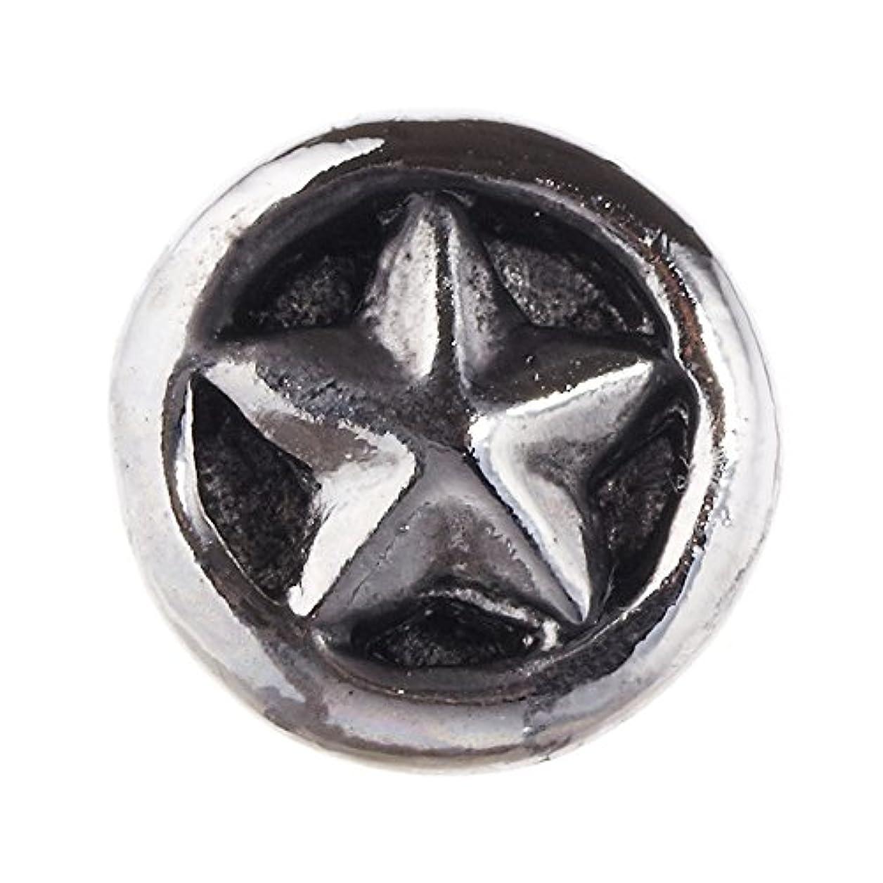 階シニスガウンアクセサリーピエナ メンズ片耳スタッドピアス チタン製ポスト 片耳用 アンティーク加工 スター 星 シルバー
