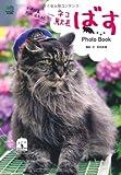 ネコ駅長ばすPhoto Book
