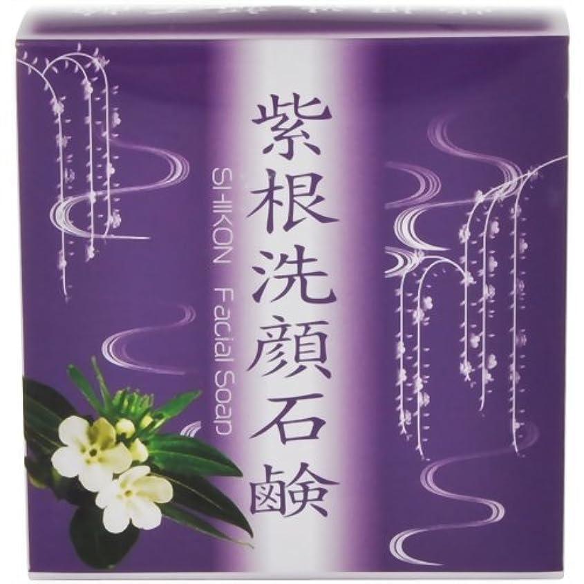 気を散らすボーダー箱紫根洗顔石鹸泡立てネット付き80g[ネット付き80g]