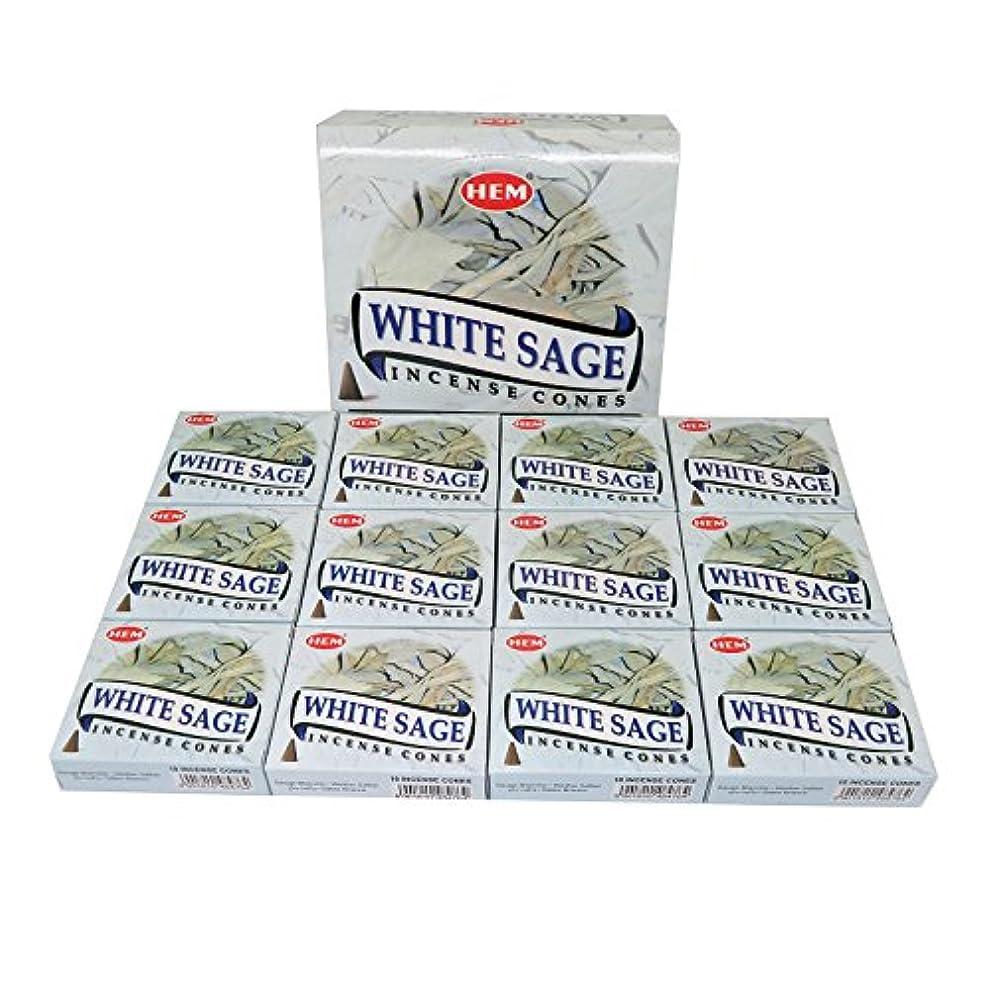 進化コーヒーに賛成HEM社 インド製 コーンタイプ香 1ケース12箱入 (ホワイトセージ)