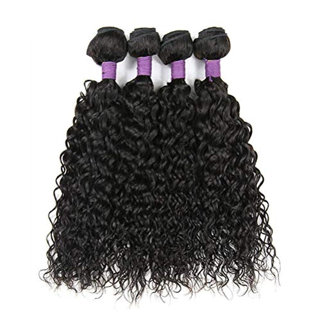 ピジン無し火薬毛織り130%密度ブラジルの変態カーリーヘアバンドルブラジルの髪1バンドルブラジル人毛