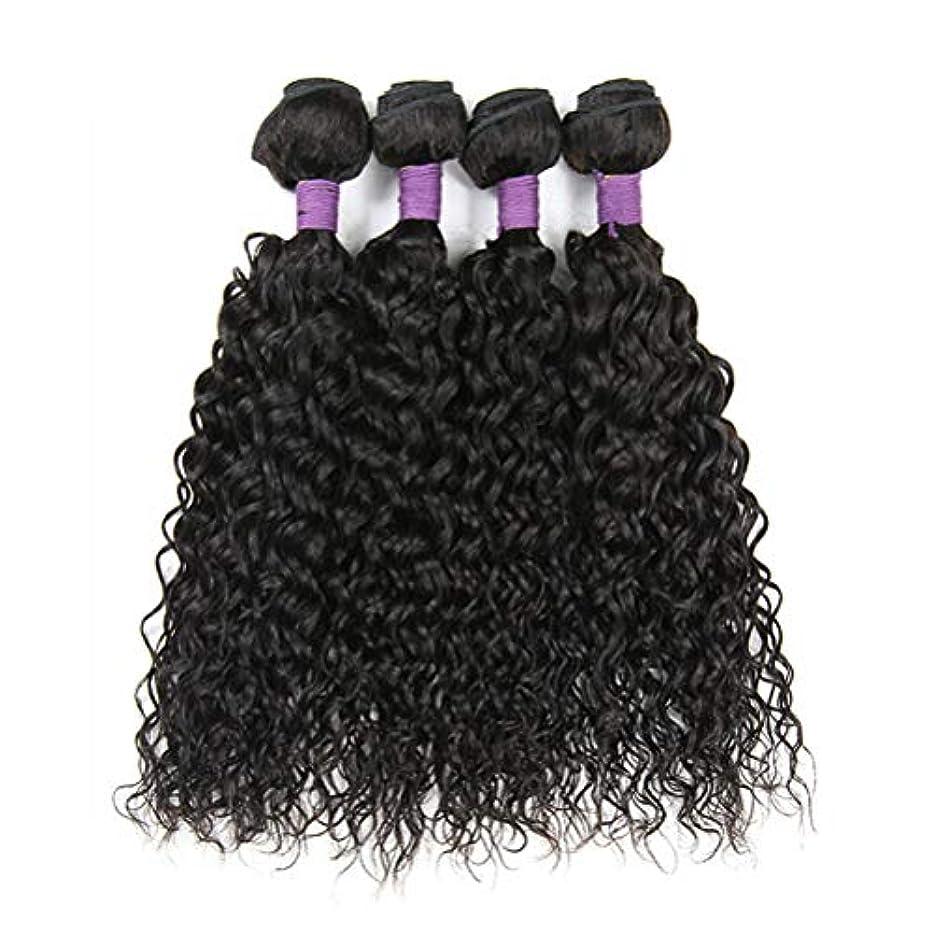 起きる結核実現可能毛織り130%密度ブラジルの変態カーリーヘアバンドルブラジルの髪1バンドルブラジル人毛