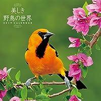 トライエックス 美しき野鳥の世界 2019年 祝日訂正シール付き カレンダー CL-372 壁掛け 60×30cm 野鳥