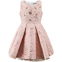 childdkivy Little Girls Clothes Party Dress Toddler/Kid