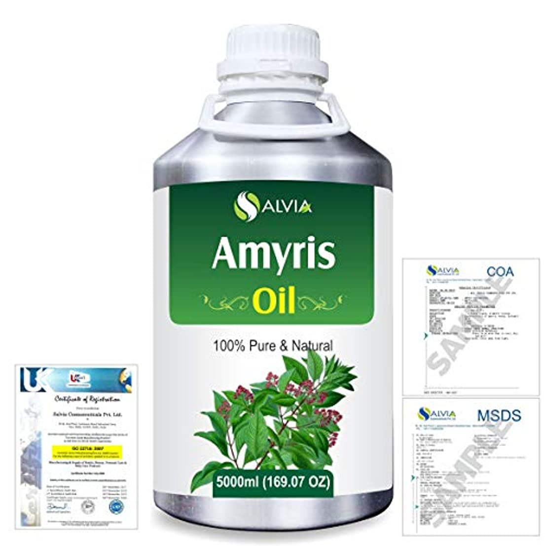 わなトチの実の木振りかけるAmyris (Amyris balsamifera) 100% Natural Pure Essential Oil 5000ml/169fl.oz.