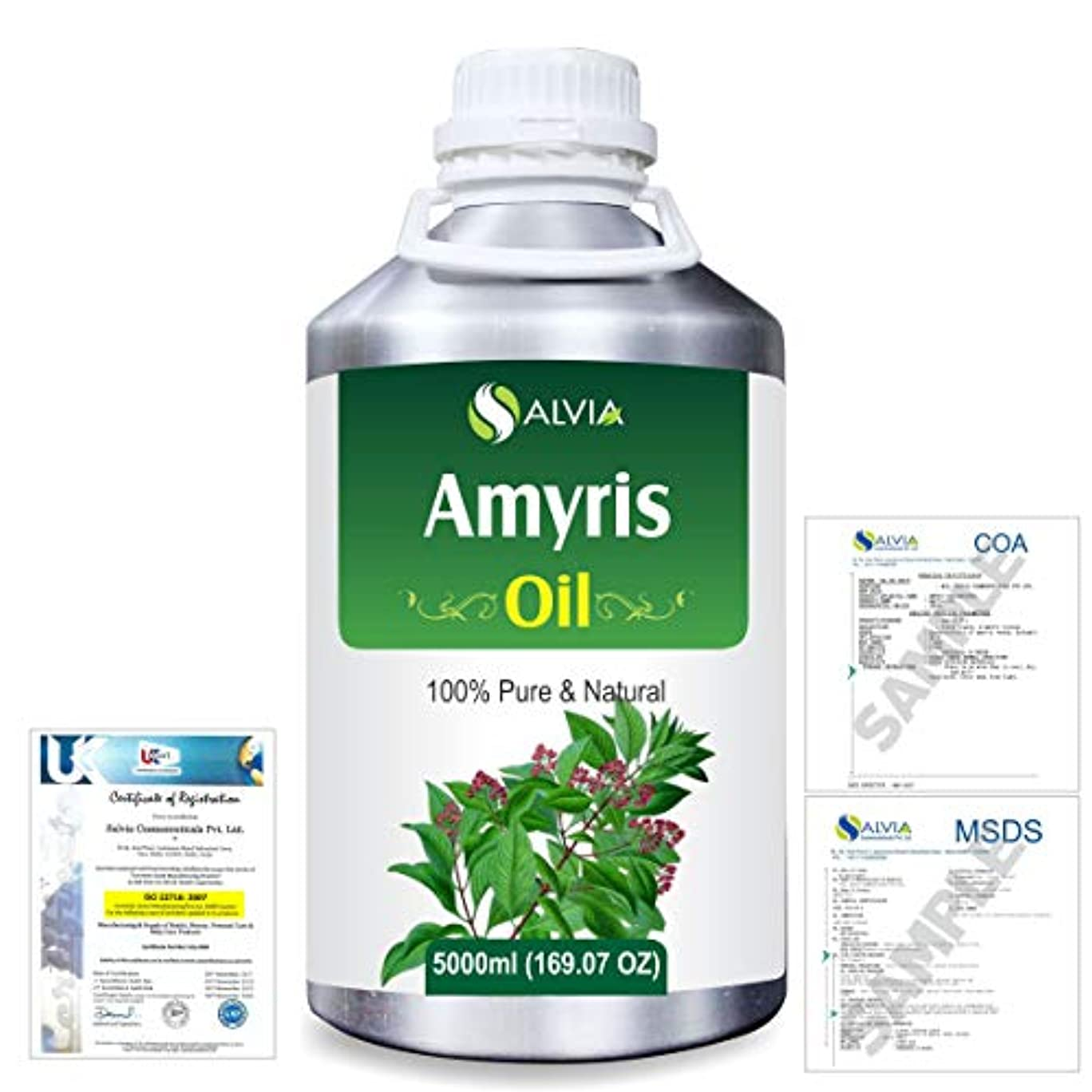 音楽家丈夫世代Amyris (Amyris balsamifera) 100% Natural Pure Essential Oil 5000ml/169fl.oz.