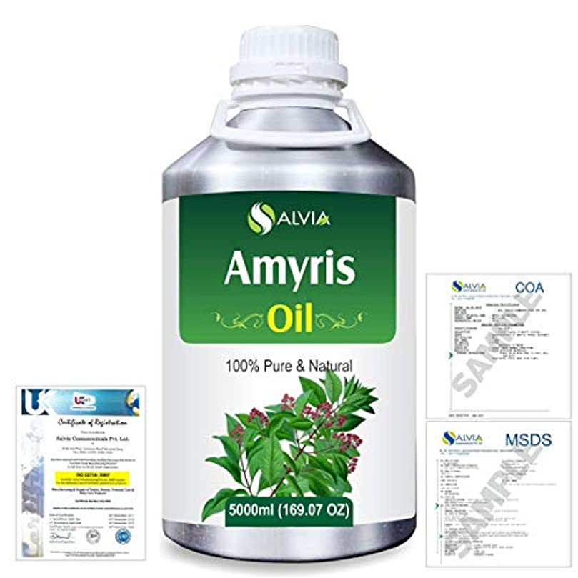 入場クレデンシャルファッションAmyris (Amyris balsamifera) 100% Natural Pure Essential Oil 5000ml/169fl.oz.