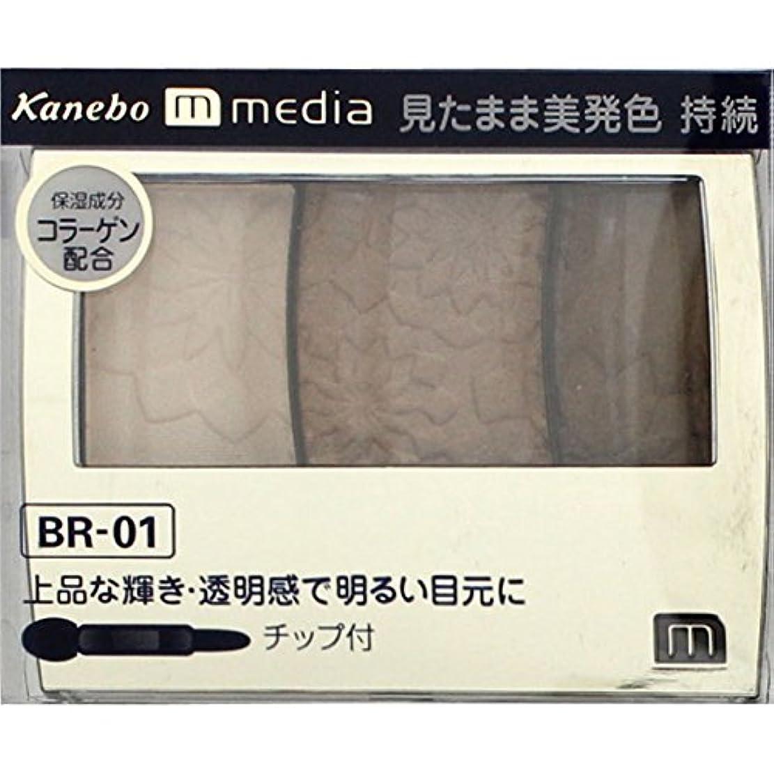 ファイアル直接発見【カネボウ】 メディア グラデカラーアイシャドウ BR-01
