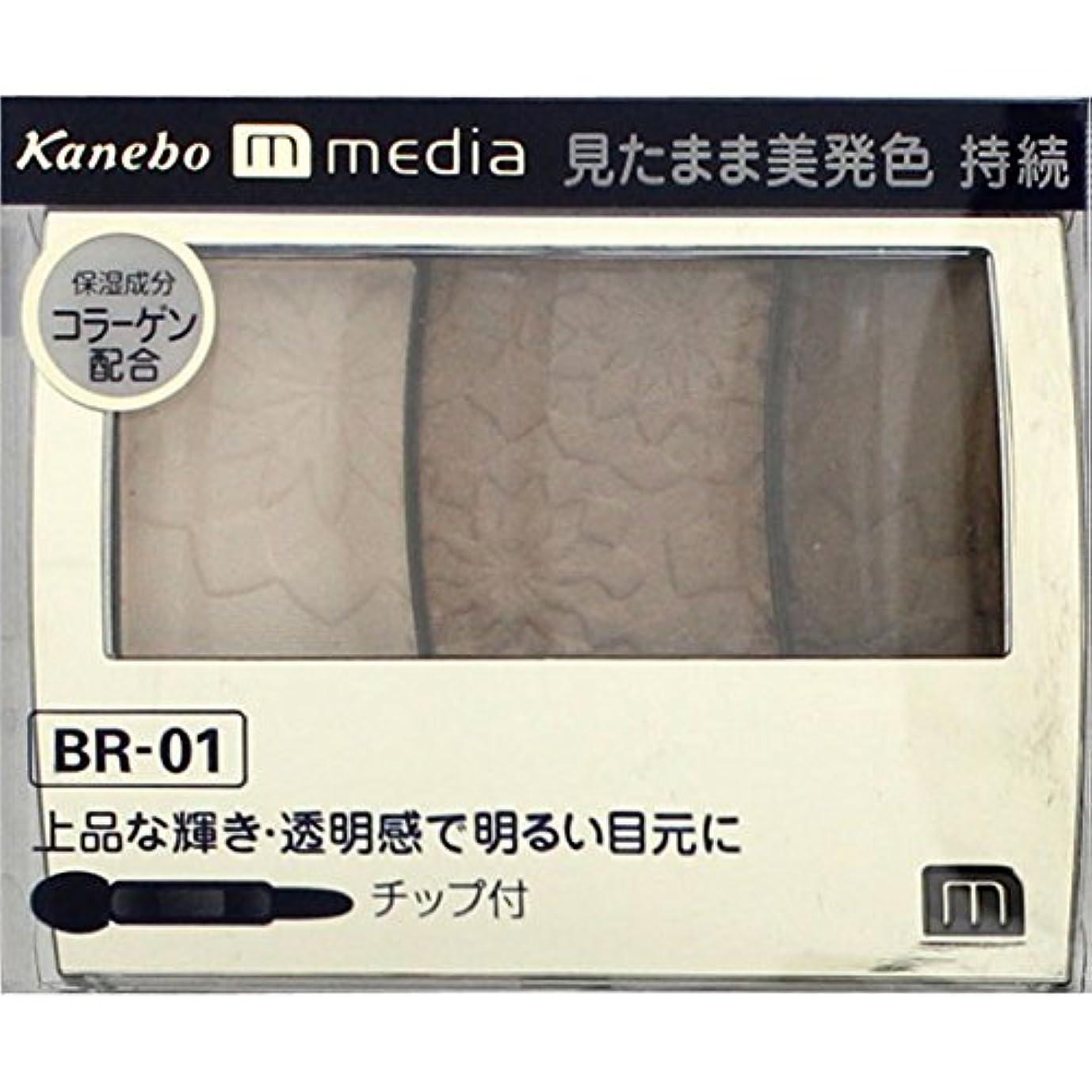 ミントリーズ息切れ【カネボウ】 メディア グラデカラーアイシャドウ BR-01