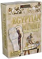 Egypt Mummy Excavation Kit by GeoCentral [並行輸入品]
