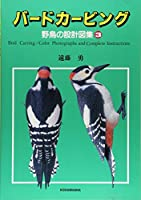 バードカービング―野鳥の設計図集〈3〉