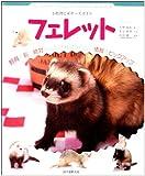 フェレット―小動物ビギナーズガイド (SMALL ANIMAL POCKET BOOK SERIES)