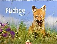 Fuechse - Kalender 2019