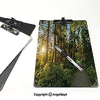 キングジム:クリップボード カラー A4判タテ型 風景 会議資料など挟 ケープブレトンハイランドカナダの森林公園の木の静けさの写真ブルーグリーンの国立公園