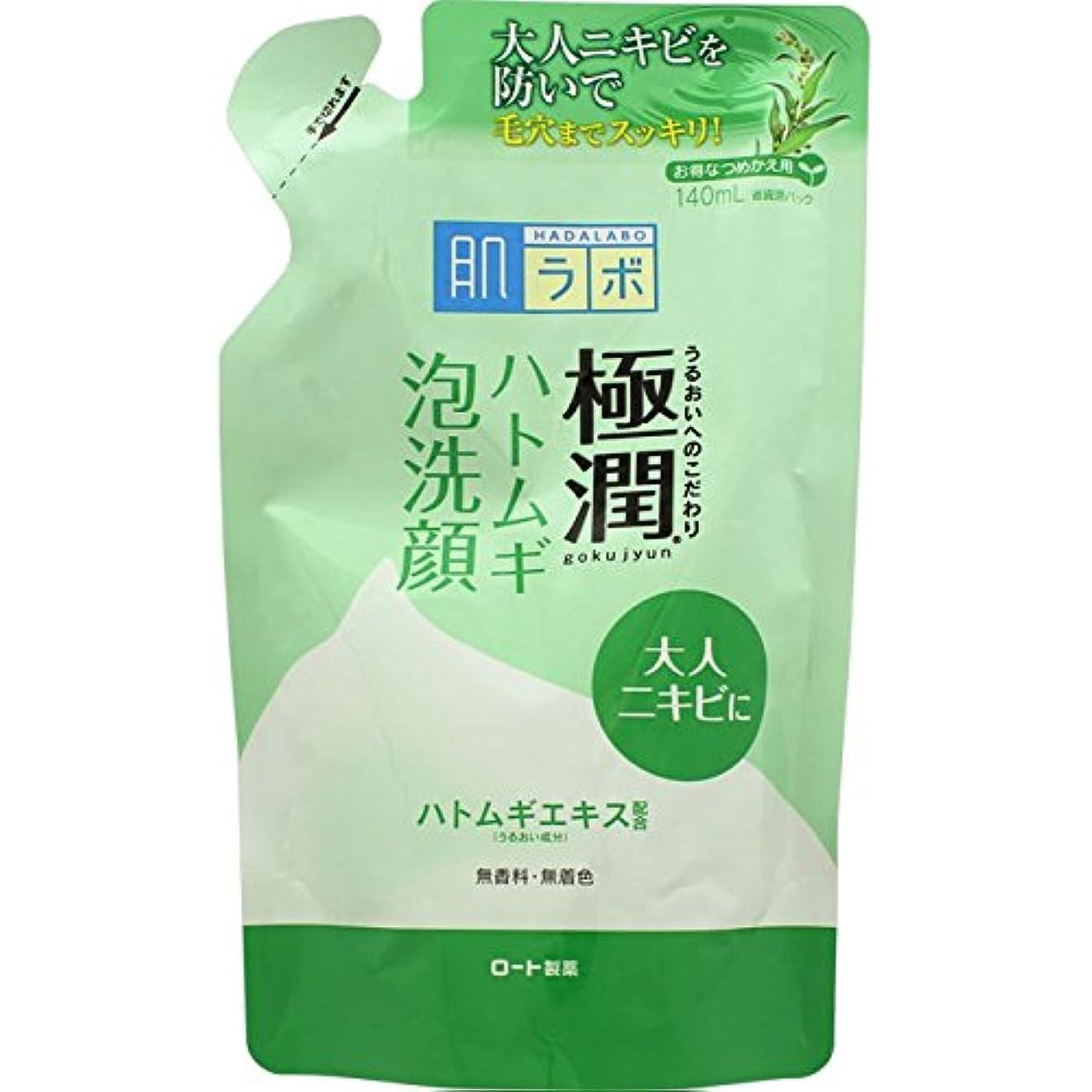 簡単な接触貞肌ラボ 極潤 毛穴洗浄 大人ニキビ予防 ハトムギ泡洗顔 詰替用 140mL