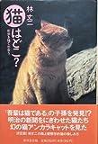 猫はどこ?—街歩き猫と出会う